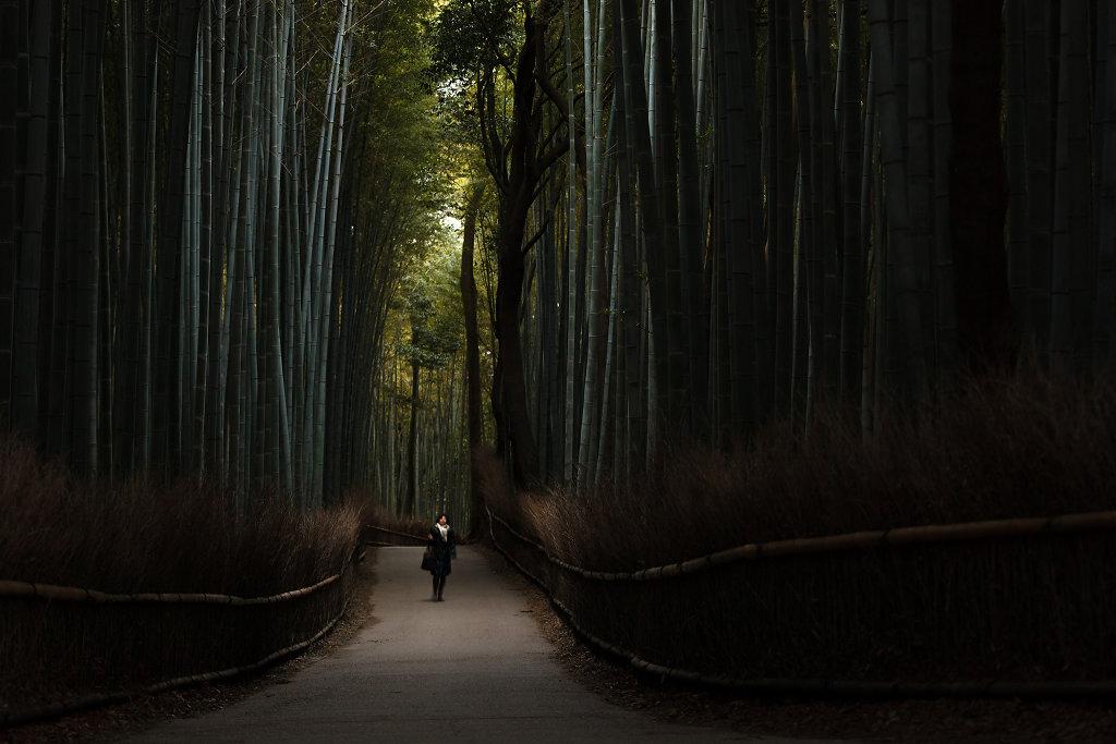 Kyoto, 2012