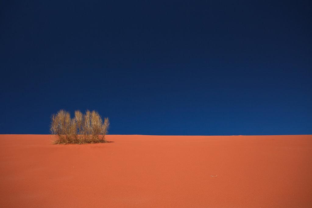 Wadi Rum 2011