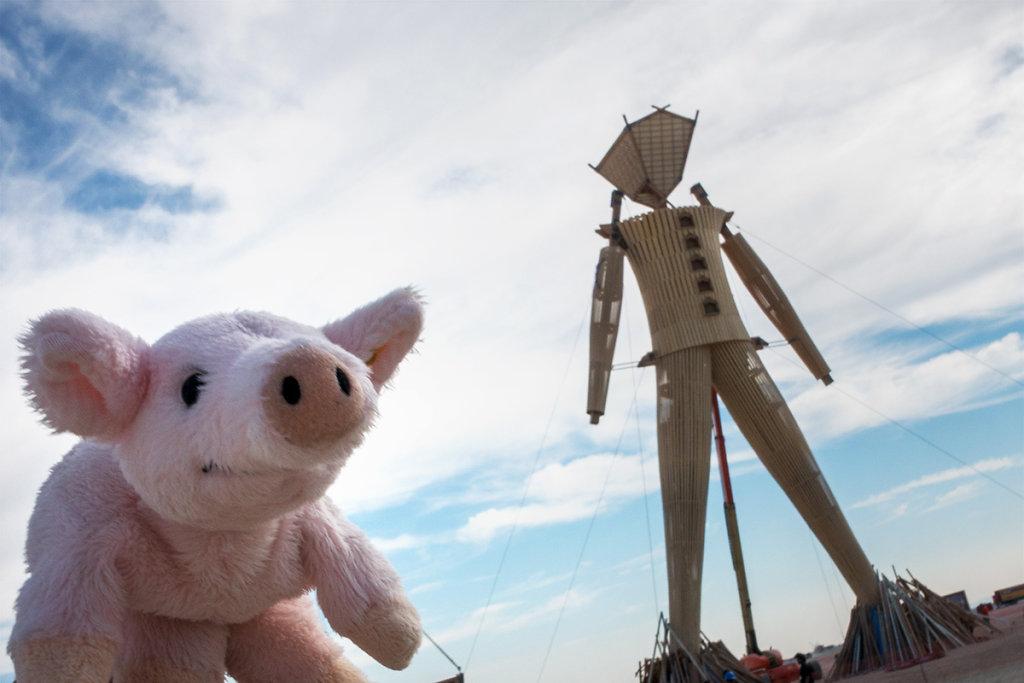USA, Burning Man Festival, 2014