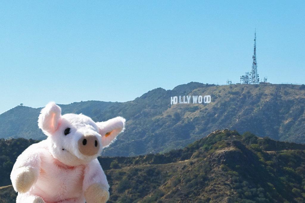 USA, Los Angeles, 2014